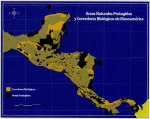 Corredor Biológico Mesoamericano