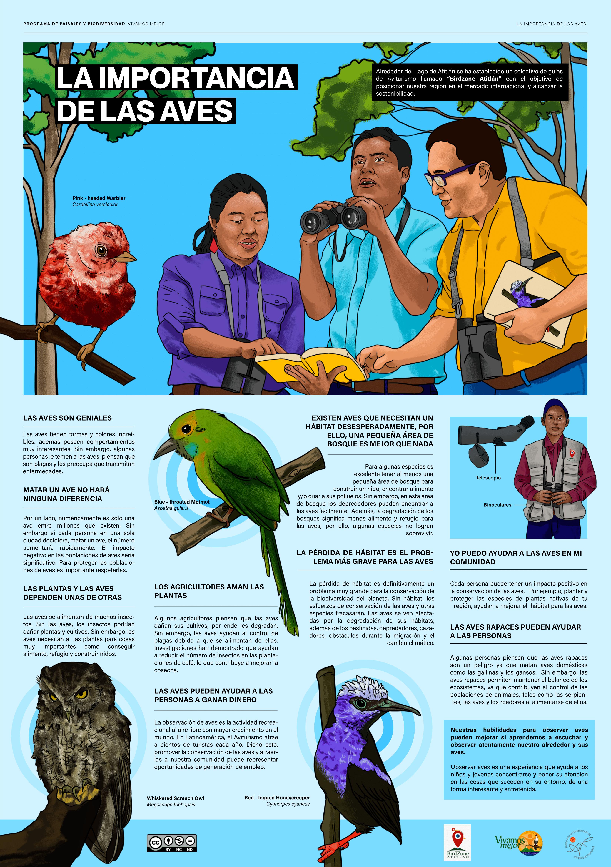 Importancia-de-las-aves